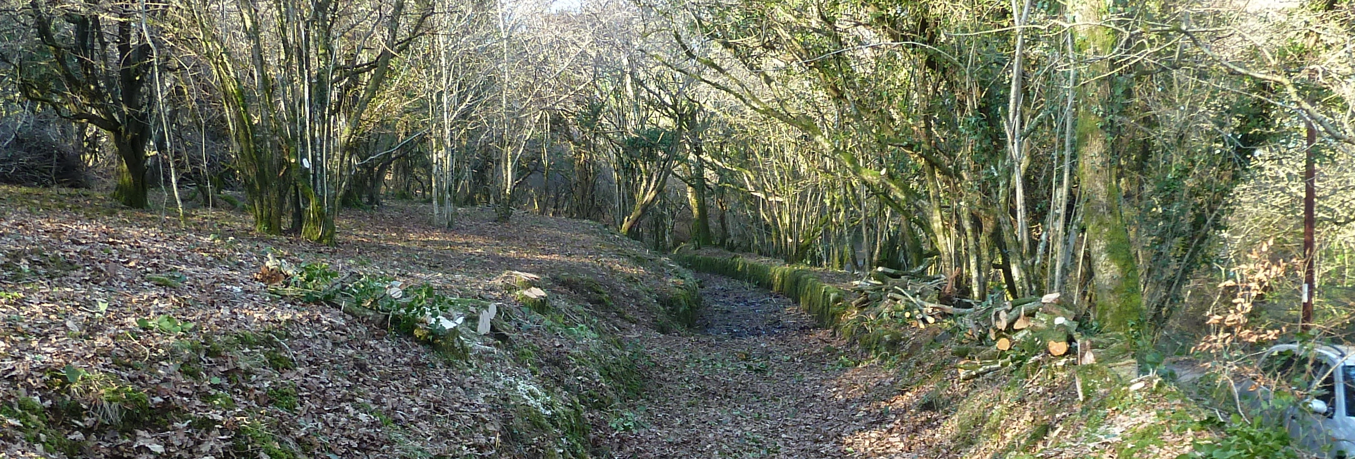 Photo of the leat where it has been cleared