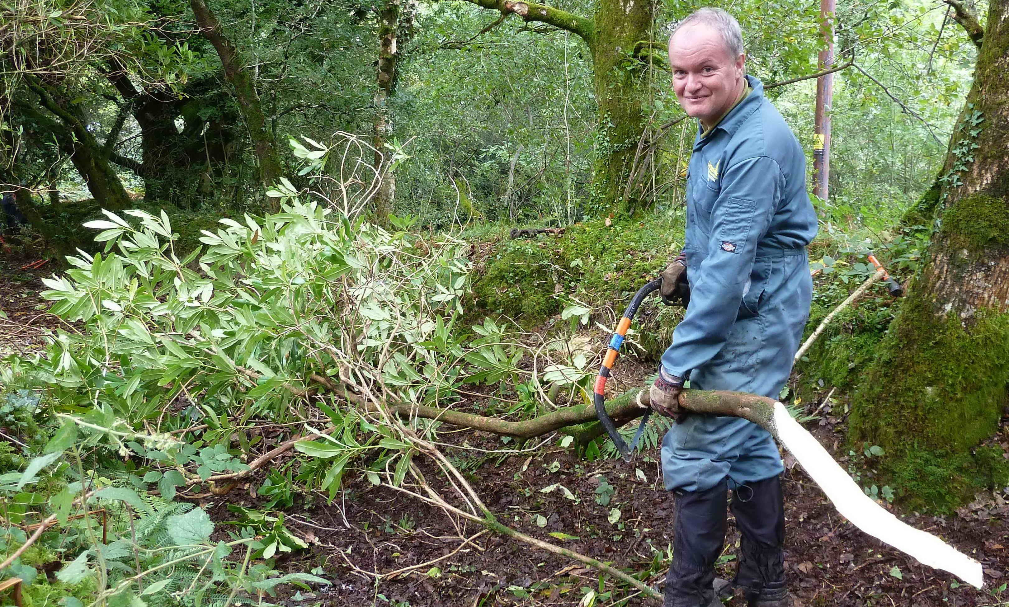 Nigel cutting rhodoendron