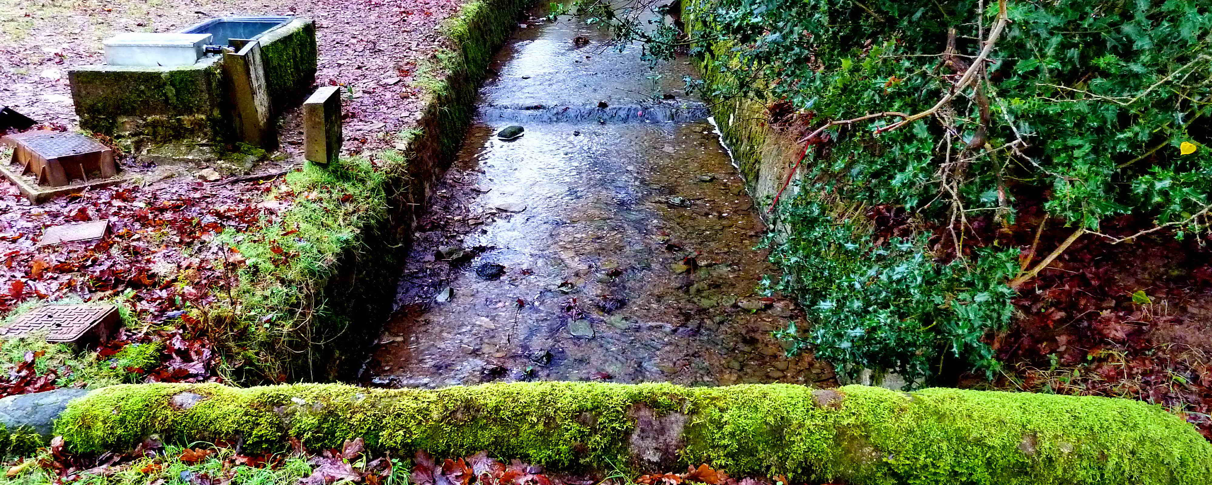 Water flowing in Drake's Plymouth Leat at the point where it passes a drinking trough for livestock and enters private fields.