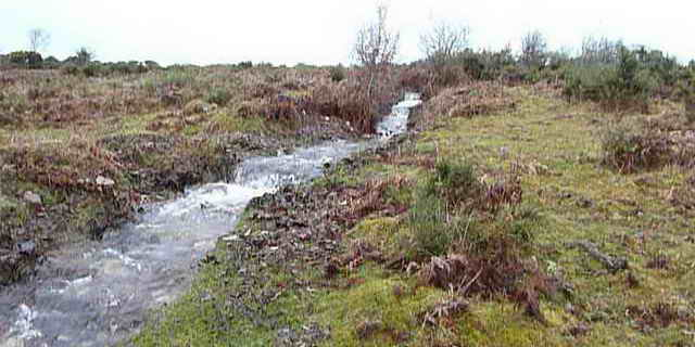 Water from Plymouth Leat running down the hill from the breach.