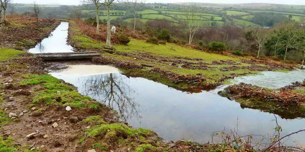 Clearbrook Leat, showing the first breach.