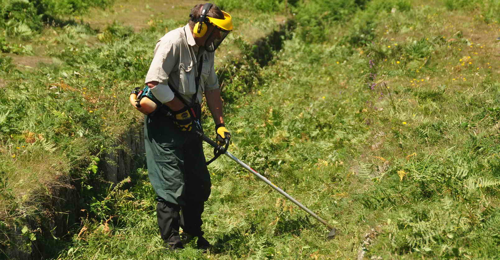 Cutting bracken in the Plymouth Leat