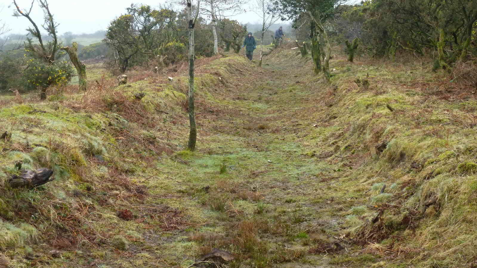 A section of cleared leat.