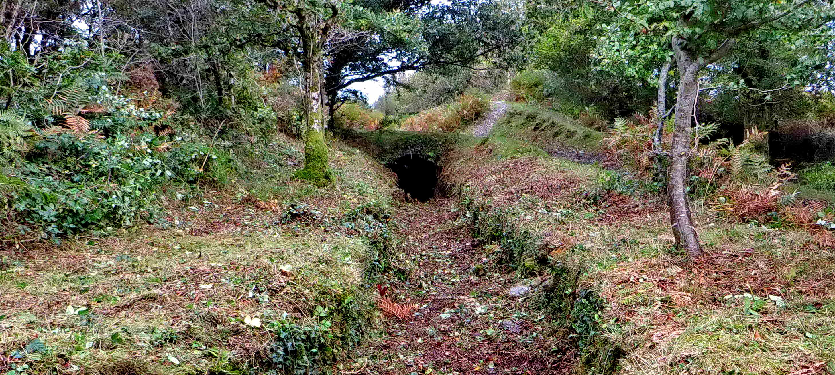 Overview of the tunnel entrance.
