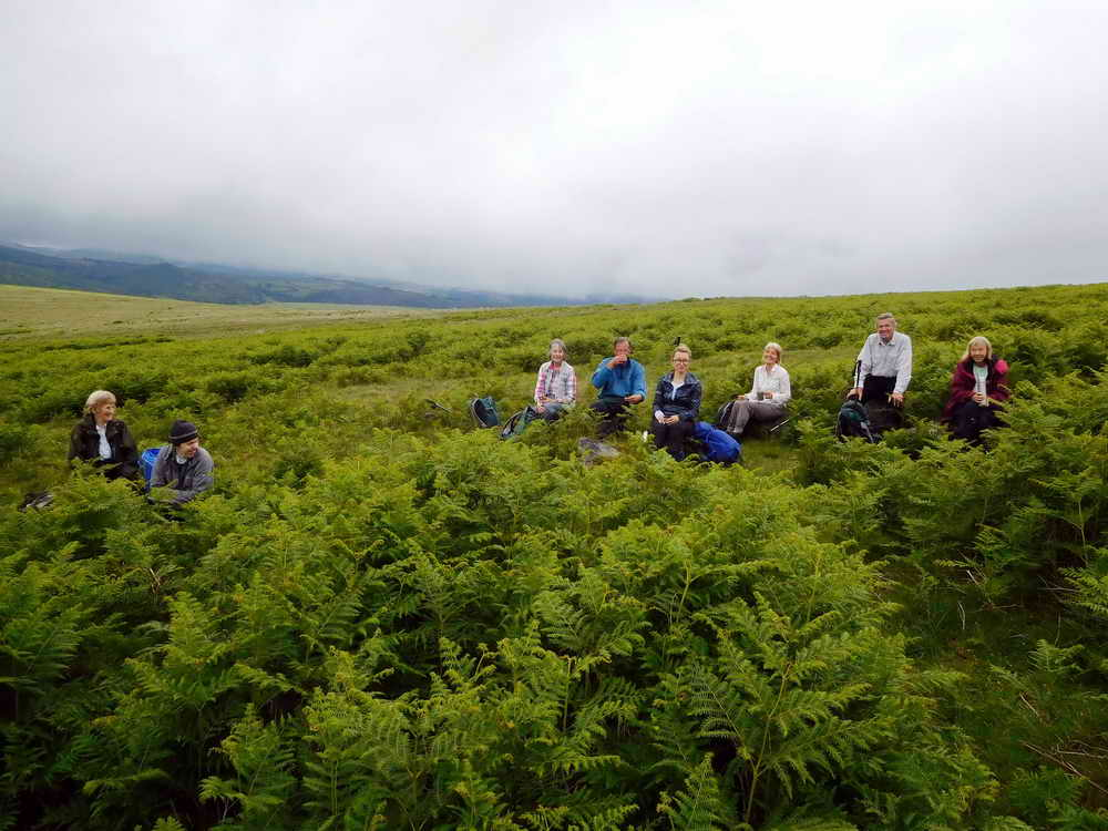 Coffee break among the bracken, at the top of Drylake.