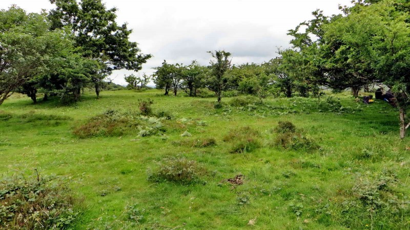 "General view of the ""Earthwork"", taken from outside the outer rampart."