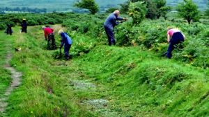 Clearing away the cut bracken by hand.