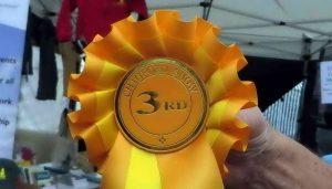 3rd place rosette.