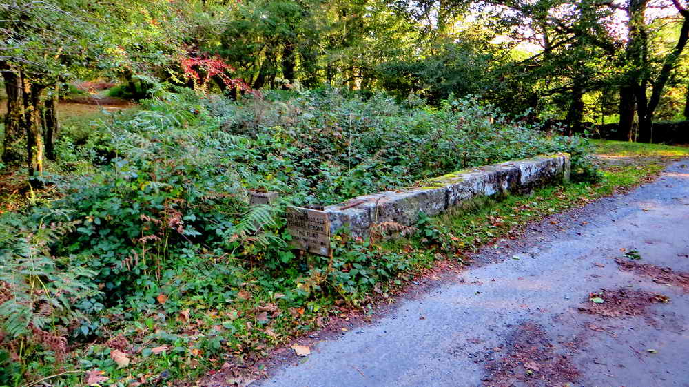 "The small road bridge over the leat, from the ""north - BEFORE clearing."