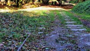 Cleared area showing the granite setts and a rare piece of iron rail.