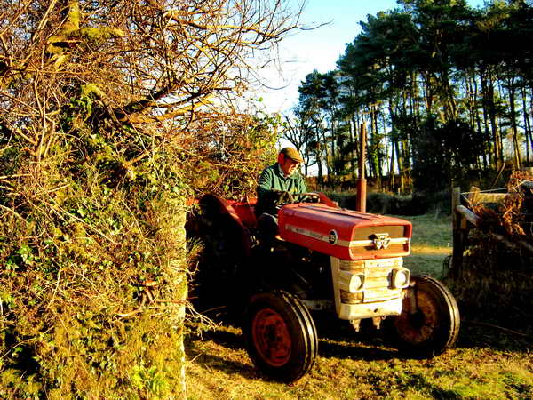 Tractor exiting the field. Photo: Rachel Watson