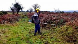 Devonport Leat - strimmer under training