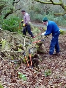 Chris and Jack making short work of a fallen branch. Photo: Val Barns