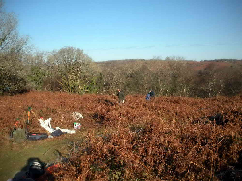 Clearing saplings and bracken. Photo: Hilary Marshall