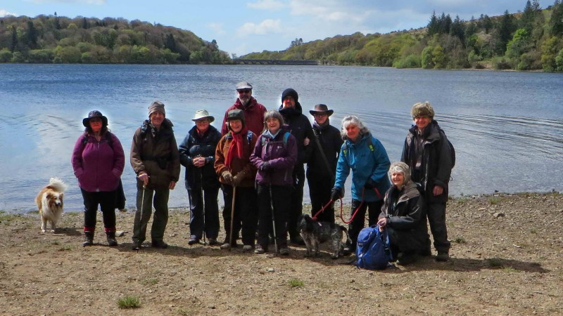 Today's group of walkers.