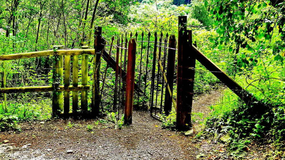 "A ""kissing"" gate"
