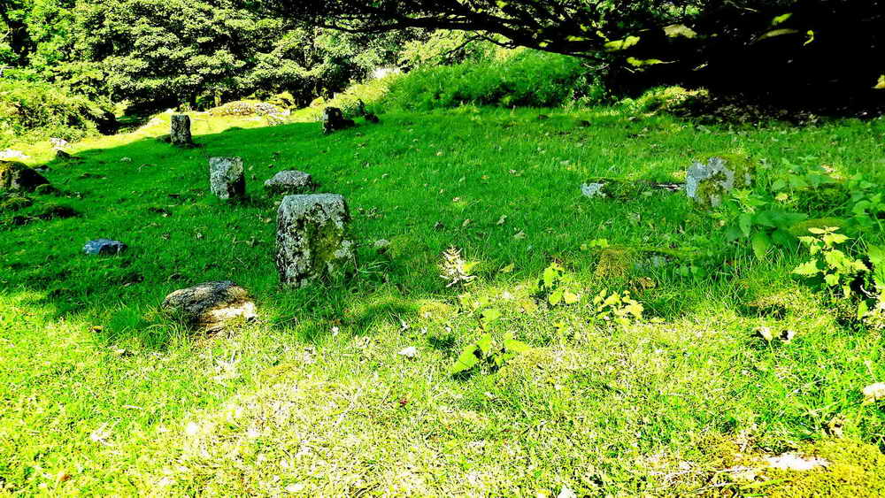 Staddle stones at East Deancombe