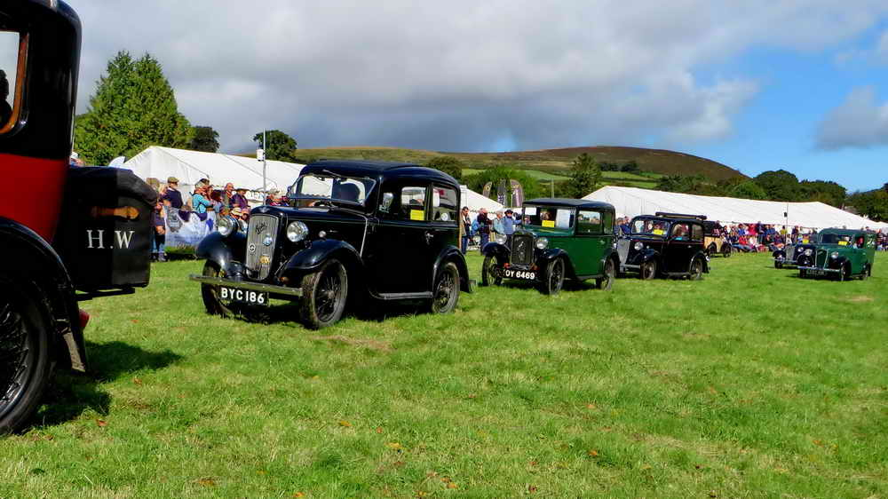 Parade of Austin Seven Motor Cars
