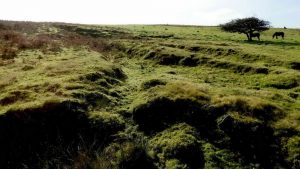 Possible stone pits near the abandoned quarry area