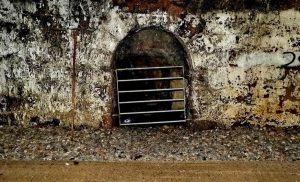 Entrance in the tunnel to Bickleigh Vale Phoenix Mine