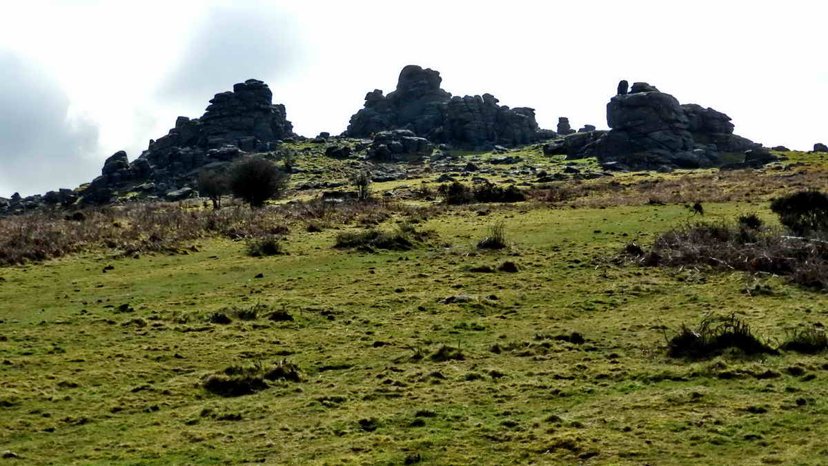General view of Hound Tor