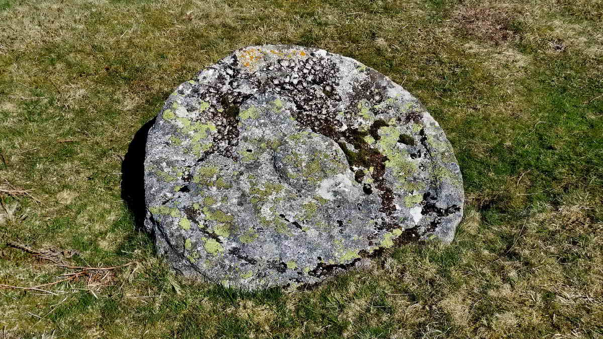 Abandoned cider press pound stone at Feather Tor