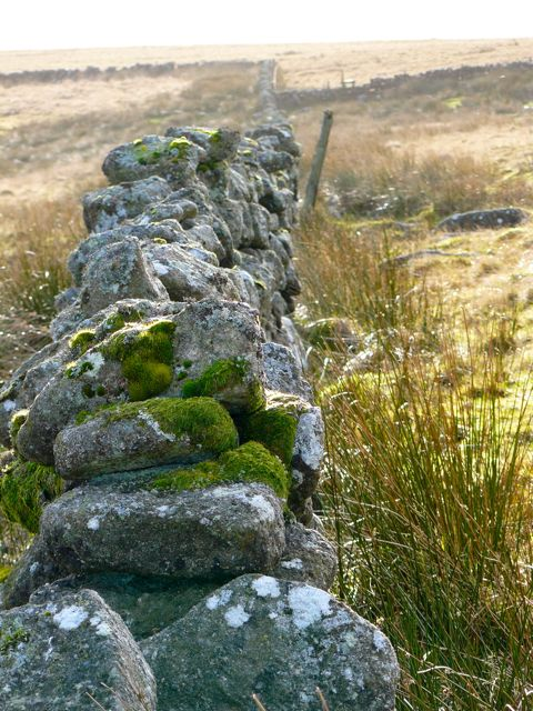 drystone-wall-dartmoor