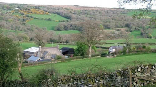 upland-farm-dartmoor