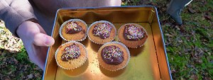 Esther's Bonfire Night Fairy Cakes