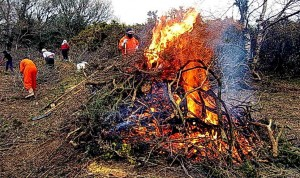 The bonfire reducing the cuttings to ash