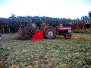 Tractor gathering cut material. Photo: Hilary Marshall