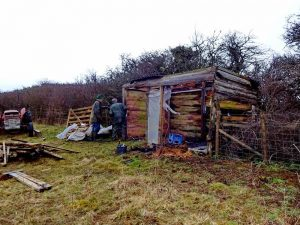 Shed ..... going .....