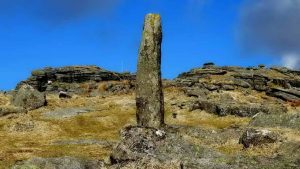 Forest of Dartmoor boundary marker