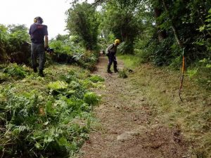 Strimming the bridleway