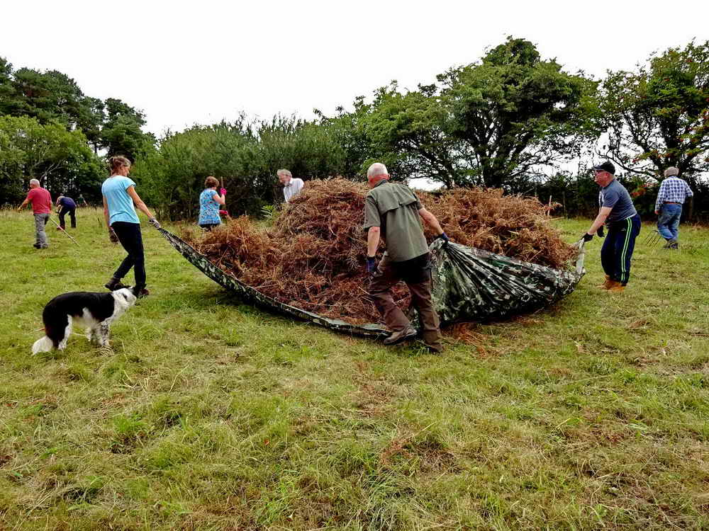 The tarpaulins could be well-loaded as the bracken was dry and lightweight