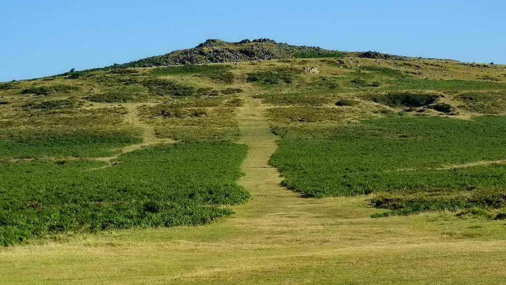 The track up Cox Tor Hill