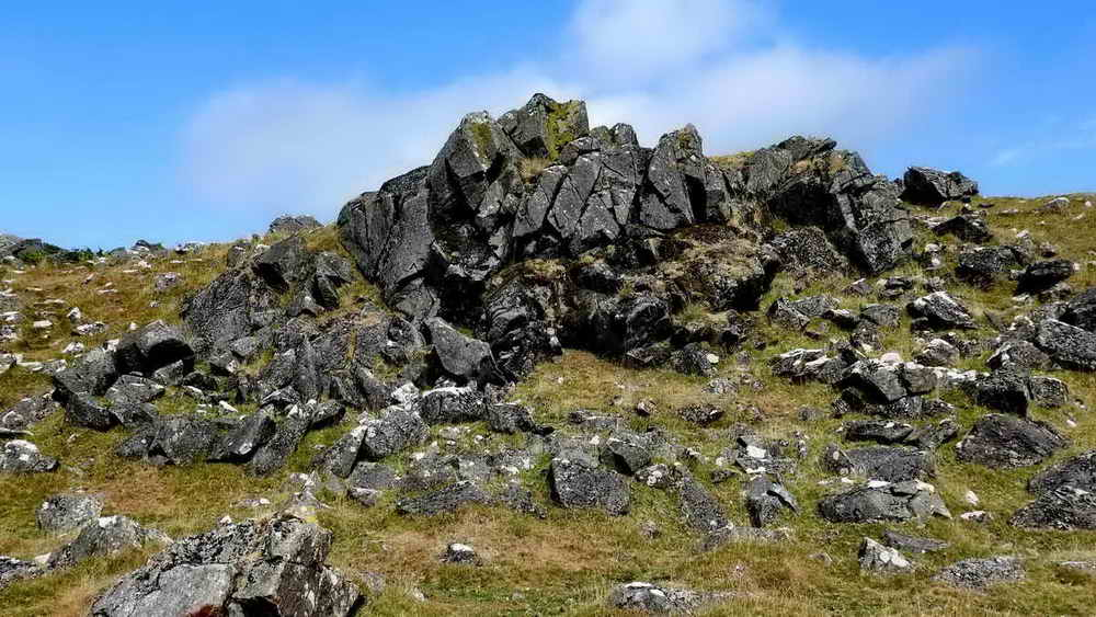 Exposed dolerite rock face