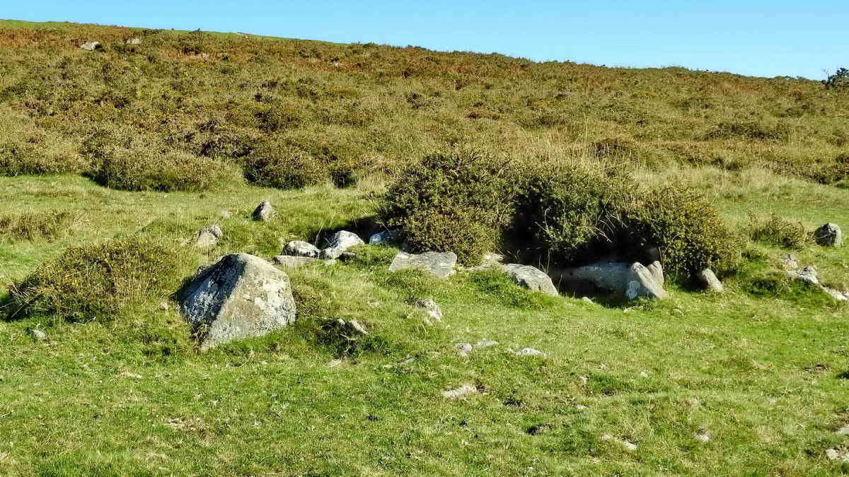 Bronze Age ring cairn and cist