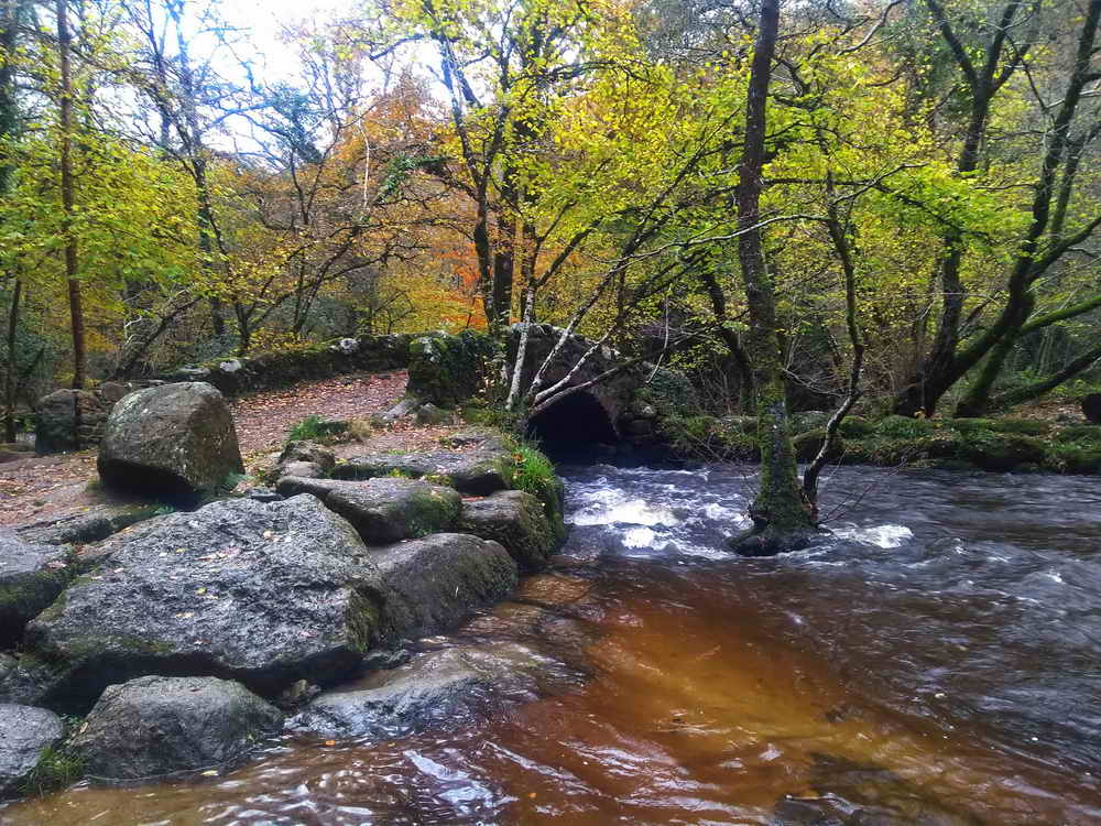 Hisley Bridge over the River Bovey. Photo: Sylvia Hamilton