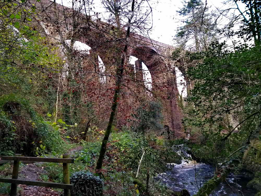 The Stowford Viaduct showing the old piers beside the new.  Photo: Sylvia Hamilton