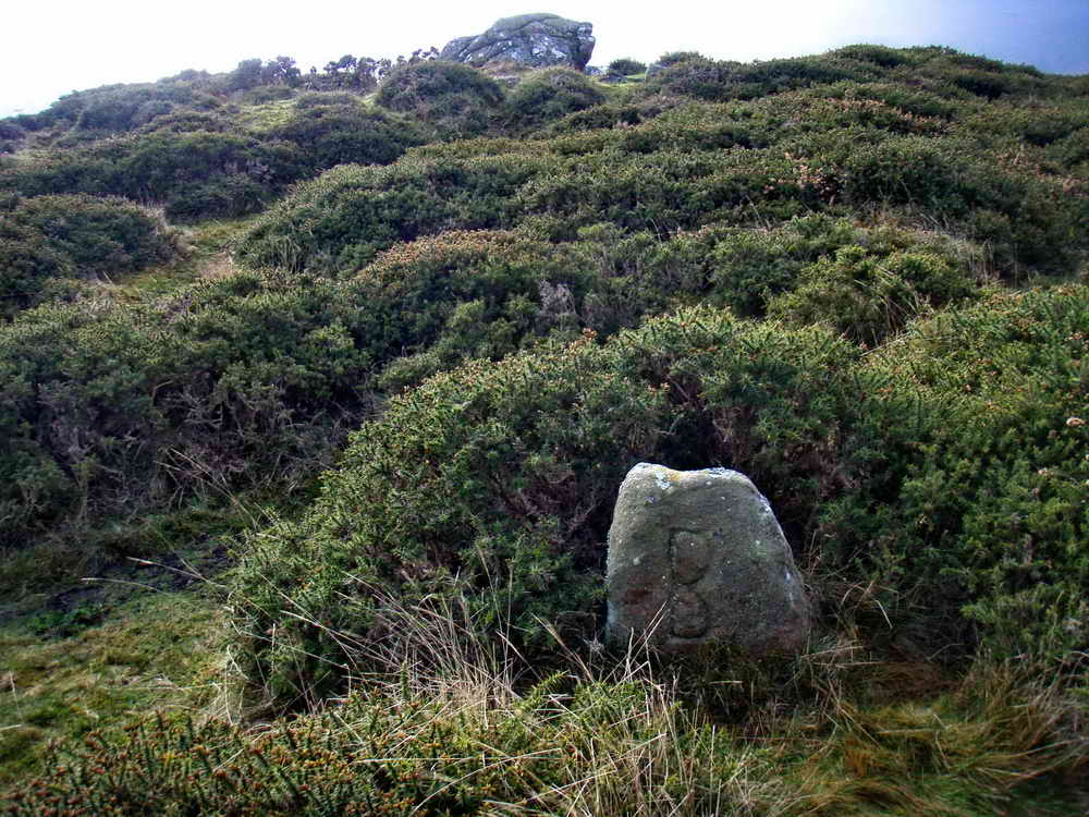 Boundary stone with the cairn in background. Photo: Bill Radcliffe