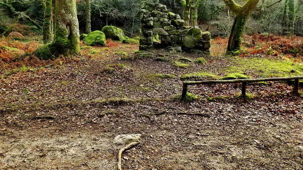 Ruins of the Smithy at the iron mine. The drill-testing stone can be seen by the tree root, near the camera.