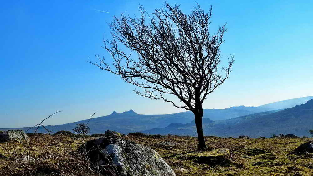 Haytor Rocks, from Hayne Down Rocks