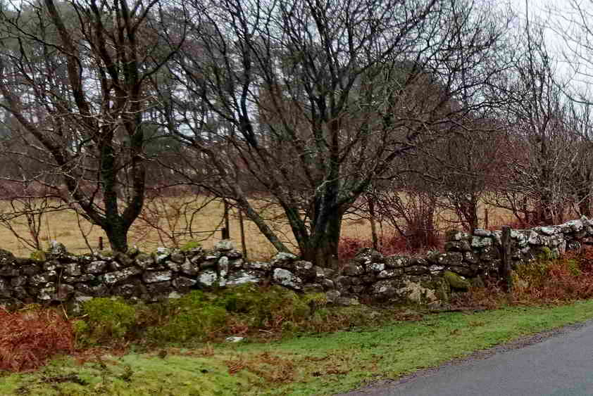 The roadside wall at Pudsham Meadows was in need of repair
