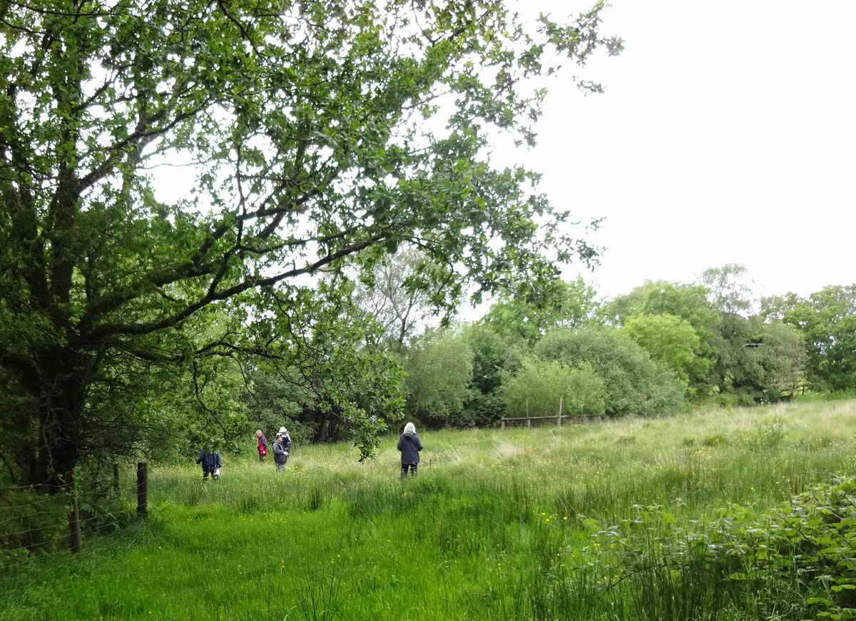 Two teams in the lower part of Ralph's Meadow.