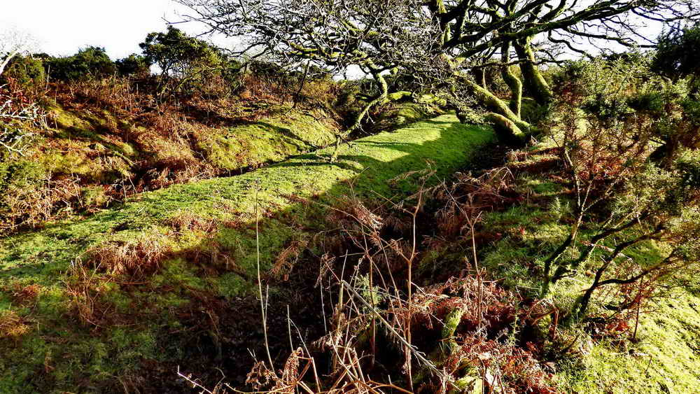 Meavy Iron Mine diggings