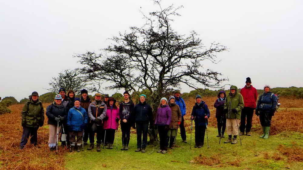 Group near hut circle 95 metres from Burrator Quarry car park