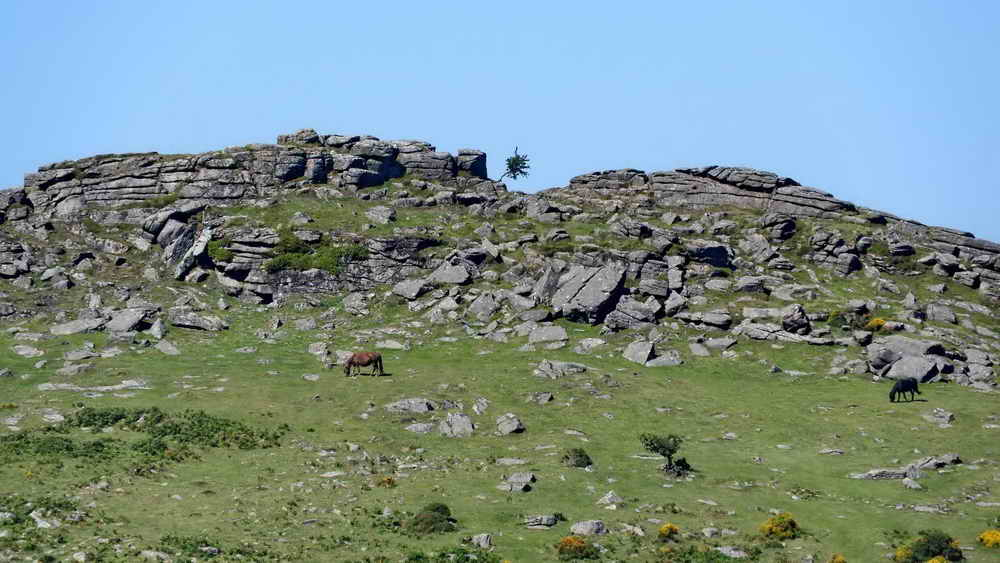 Zoomed view to Sharp Tor