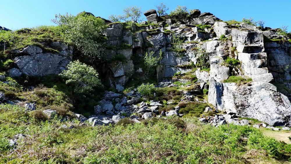 East section of Holwell Quarry